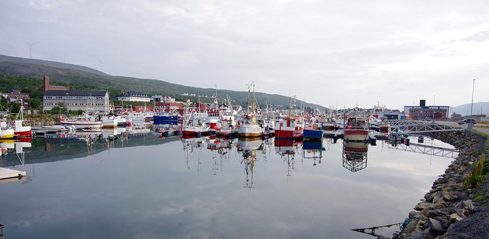 Fiskebåter i Båtsfjord havn. (Foto: Jostein Sandsmark)